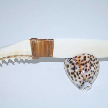 Shark jaw handle knife with a bone blade..... e576...... primitive replica