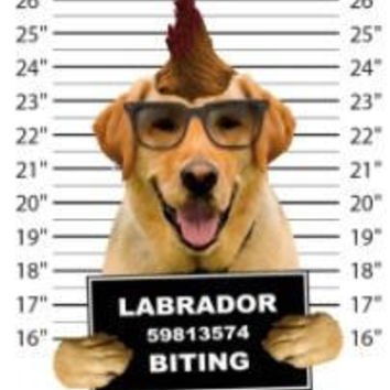 labrador biting t-shirt mens t-shirts dogs mugshot t-shirts mug shirt dog pets tshirt pet lover