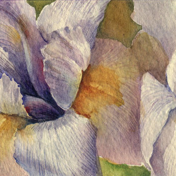 "Artist Trading Card ACEO Original watercolor painting, flower, ""Iris"" paper"