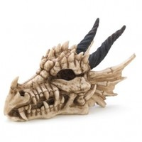 Snarling Magical Dragon Skull Treasure Trinket Box