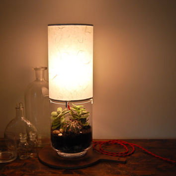 $125.00 Terrarium/ Display Column Table Lamp by SHareStudios on Etsy
