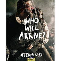 The Walking Dead Rick Michonne Terminus Poster