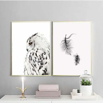 Posters And Prints Wall Art Canvas Painting Wall Pictures For Living Room Nordic Owl feather Decoration