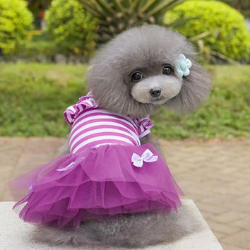 Hot Pink&Purple Summer Lace Dress for Dog Clothes Cute Pets Dog Striped Ball Gown Roupa Pra Cachorro