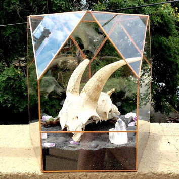 Large Glass Geometric Terrarium
