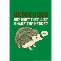 (13x19) Hedgehogs Snorg Tees Poster