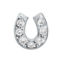 Horseshoe with Clear Crystals Floating Charm on Silver