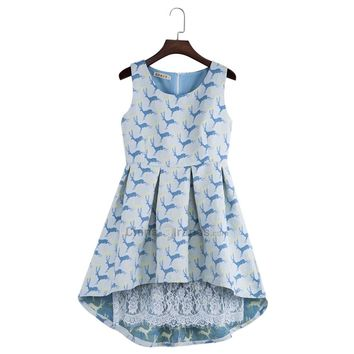 Stylish Round Collar Sleeveless Zipper Pleated Asymmetric Lace Patchwork Elk Jacquard Ball Gown Dress for Women
