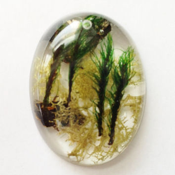 Forest Moss Pendant, Natural Mosses in Clear Resin, Woodland Jewelry