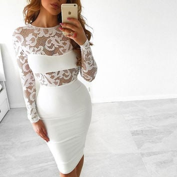 Women Lace Embroidery Patchwork See-Through Bodycon Dress
