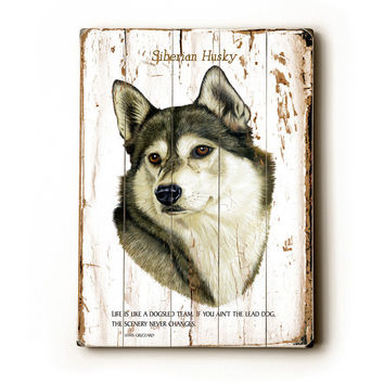 Siberian Husky by Artist Robert May Wood Sign