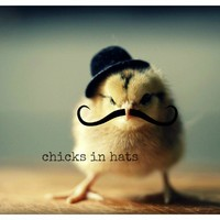 Photo Print 8x10 Chick Wearing A Hat And Mustache