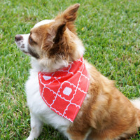 Peach Scrolled Dog Bandanna