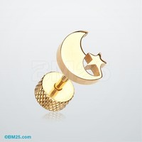 Golden Crescent Moon & Star Fake Plug Earring