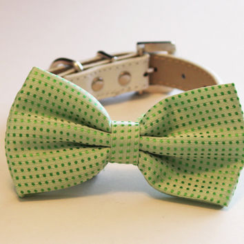 Green Dog Bow Tie attached to White Leather collar, Pet Wedding Accessory, Dog Bow tie, Dog Lovers, Spring Wedding