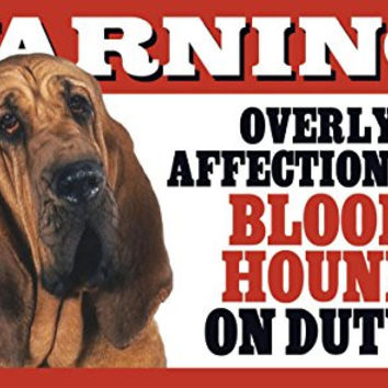 """Warning! Overly Affectionate Bloodhound On Duty! Dog Wall Sign with Bonus """"I Love My Dog"""" Decal"""