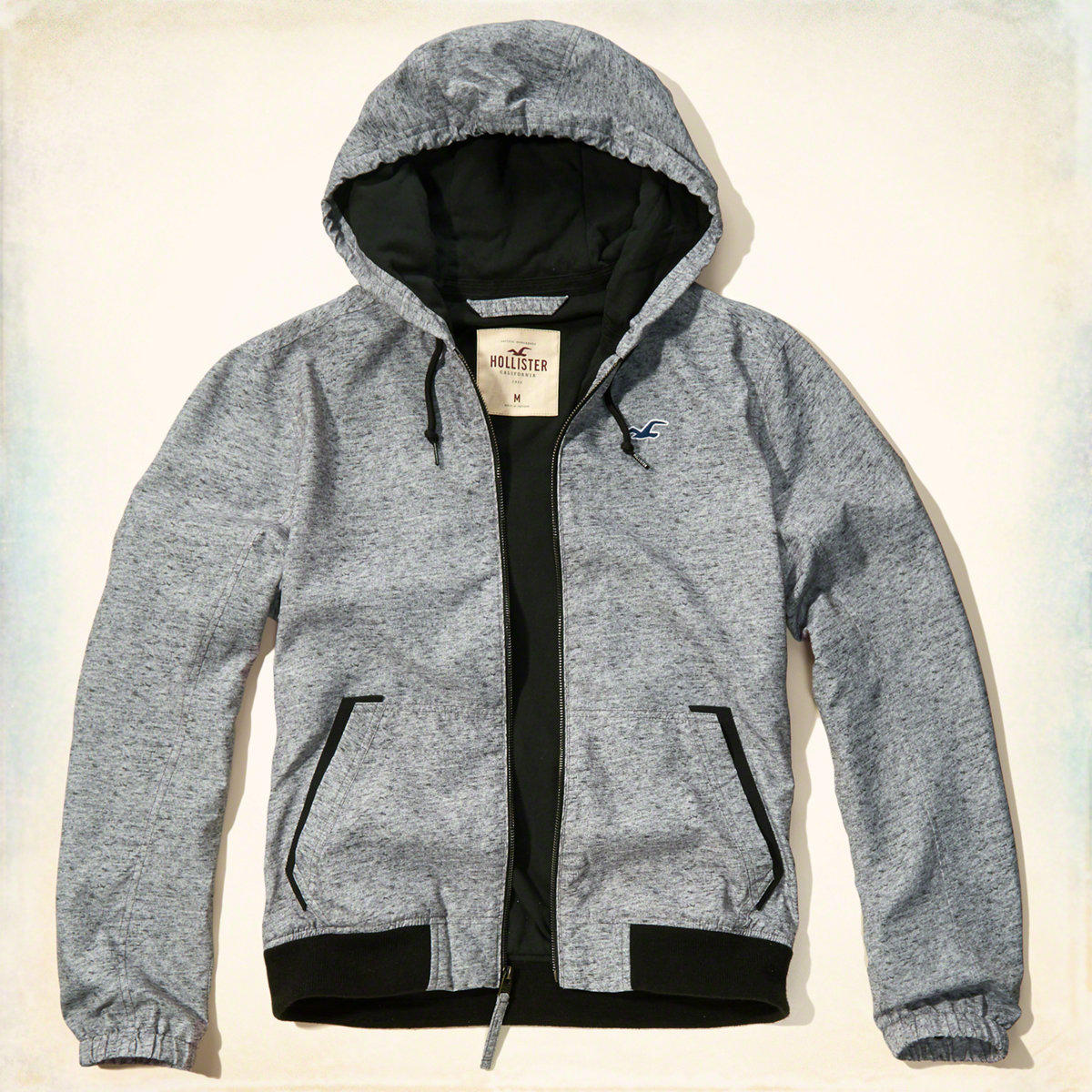 Jersey Lined Windbreaker from Hollister Co. | Fall Jackets ...