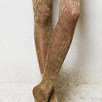 Antique Scroll Tights