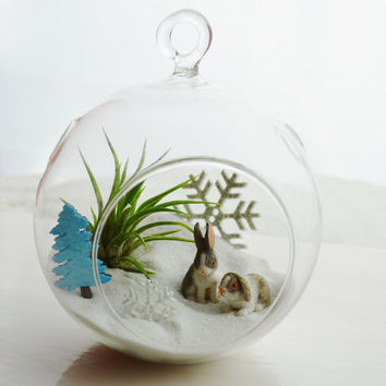 The Bunny Slope - Glass Globe Hanging Terrarium Kit w Tillandsia Air Plant - Home Decor - Gift - Holiday Decor ~ Winter