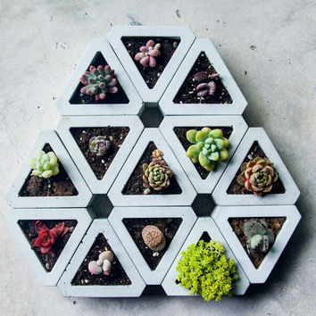Tabletop planters in concrete finish