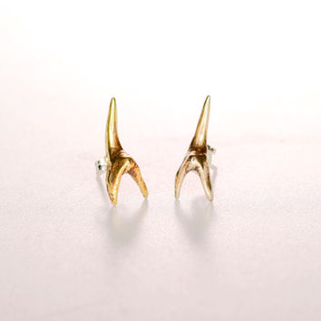 Shark Tooth Stud Earrings- Brass/ Bronze