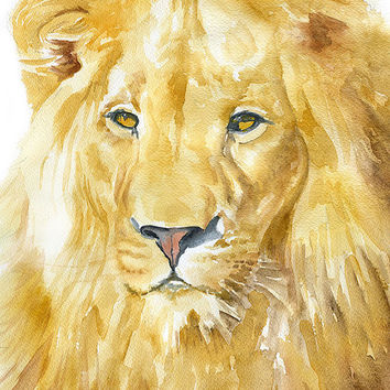 Lion Watercolor Painting - 5 x 7 - Giclee Print - Fine Art Print - African Animal - Nursery Art