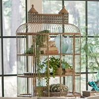 Shelved Birdcage
