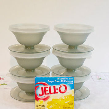 Vintage 1980s Tupperware Dessert Cups with lids set of six