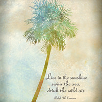 Live In The Sunshine - nature art Greeting Card