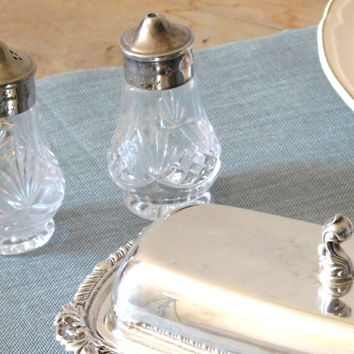Clear Glass Silver Plate Salt and Pepper Shaker Set