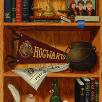 Harry Potter's Bookshelf by FineArtStudios on Etsy