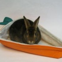 Cozy Carrot Bed | Bunny Bunch Boutique