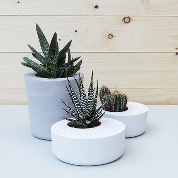 Set of 3: Concrete Planters, Geometric Concrete Planter, Concrete Planters, Minimalist style, Planter, Concrete planter
