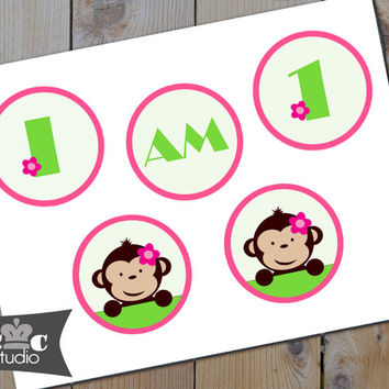 Mod Monkey First Birthday Highchair Banner - DIY Printable Girl's Monkey Bunting Banner - Instant Digital PDF Download