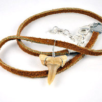 Leather Choker Shark Tooth Necklace
