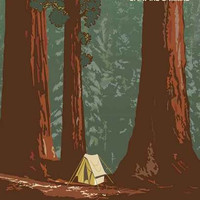 Sequoia National Park Travel Poster 11x17