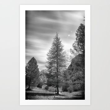 """Looking for the sky"" Into the woods... BW Art Print by Guido Montañés"