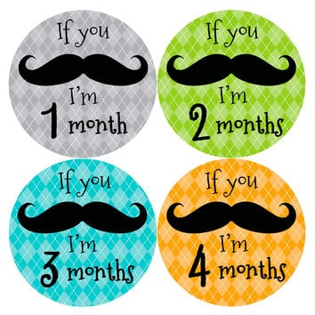 Baby Boy Monthly Milestone Stickers Style #141