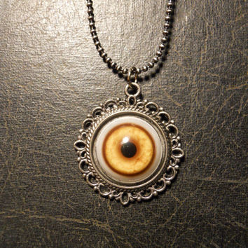 Coyote Eye Taxidermy Glass Eye Necklace