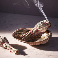 Tamed Wild Apothecary White Sage Incense Kit | Urban Outfitters