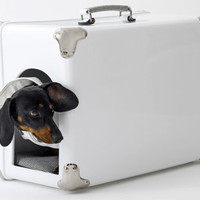 Retro To Go: Bosa Travel Doghouse - shaped like a vintage suitcase