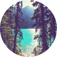 Lake Joffre Through the Trees Circle Wall Decal