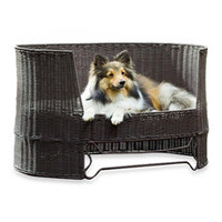 The Refined Canine™ Indoor/Outdoor Dog Day Bed with Outdoor Cushion