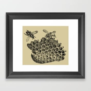 Vintage Bee & Honeycomb Framed Art Print by Blue Specs Studio
