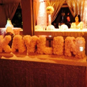 Carnation Flowers Covering Individual Free standing Styrofoam Letters for Birthdays Sweet tables weddings Sweet 16
