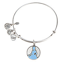Cinderella Bangle by Alex and Ani - Silver