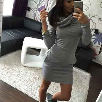 Plain Long Sleeve Hoodie Bodycon Dress