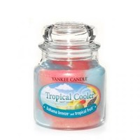 Yankee Candle Company Swirl® Candles