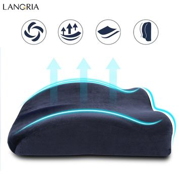 LANGRIA Newest Memory Foam High-Resilience Lumbar Back Support Cushion Relief Pillow for Office Home Car Auto Travel Booster