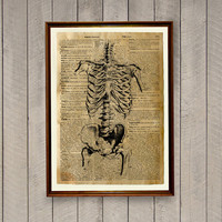Anatomy poster Macabre print Skeleton decor WA502
